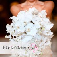 Imagen de Ramos para novia Bouquet de boda floristería Florilandia Express