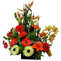 ImagenArreglo Floral Exótico Floristería Florilandia Express