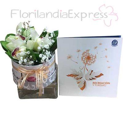 Imagen Bonos de condolencias - Plan Canitas Recreación + Caja de Orquídeas Bogotá - Florilandia Floristería Express