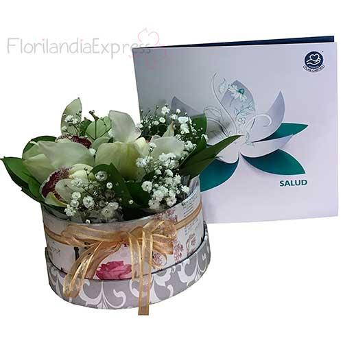 Imagen Bonos de condolencias Bogotá Bono Plan Canitas Salud + Arreglo de Orquídeas Florilandia floristería
