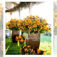 Imagen de eventos empresariales decoración girasoles Florilandia Express