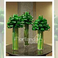 Imagen de eventos empresariales decoración hojas minimal Florilandia Express