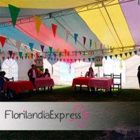 Imagen de Eventos infantiles floristería Florilandia Express Bogotá