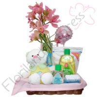 Imagen de arreglos Arreglo a para recién nacido Bellota - Floristería Florilandia Express