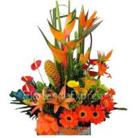 Imagen de Arreglos florales Abriles - Recupérate pronto regalos en Floristerías Florilandia Express