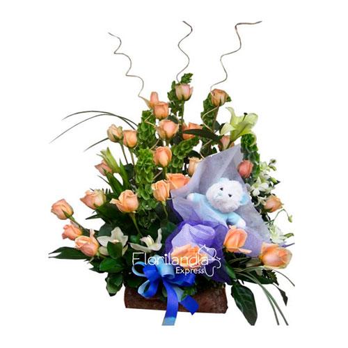 Imagen de Regalo para bebé Simba recién nacidos y nacimientos Floristería Florilandia Express