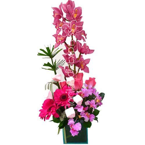 Imagen regalos de aniversario - Arreglo de Orquídeas España - Florilandia Express