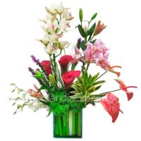 Imagen de Arreglo de Orquídeas cymbidium