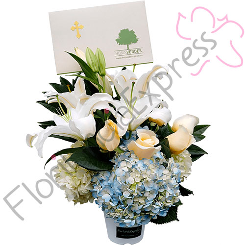 Imagen de Arreglo floral - Bonos de Condolencia - Árboles Vivos Macanú - Floristería Florilandia Express Colombia