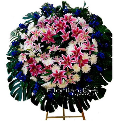 Corona Funebre realizada con rosas blancas, lirios fucsias, belladonas azules y variedad de follajes. Incluye tripode.