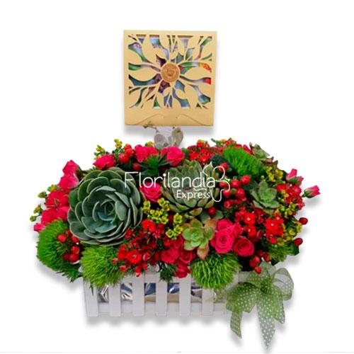 Imagen de Jardinera de suculentas con flores del campo - Bono de condolencias siembra un árbol