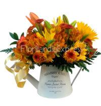 Imagen de Jarrita de flores silvestre amanecer - Arreglos Florales a domicilio - Floristería Bogotá Florilandia Express